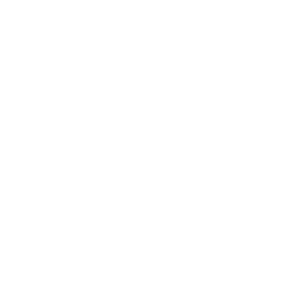 Onlineshops Icon